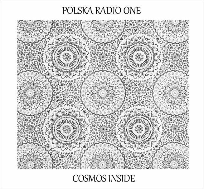 http://aural-innovations.com/blog/wp-content/uploads/2014/02/polska-cosmos.jpg